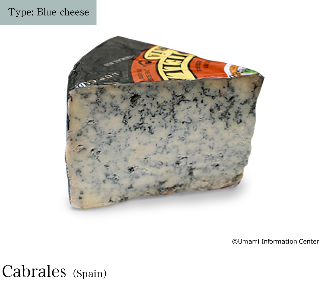 Type: Blue cheese / Cabrales(Spain)