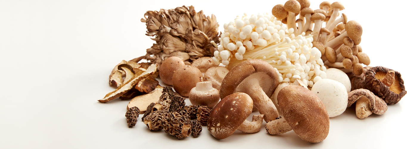 Umami Information by Food Mushrooms