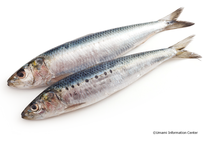 Seafood丨Umami Information Center