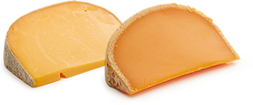 Comparison of Umami in Two Cheeses