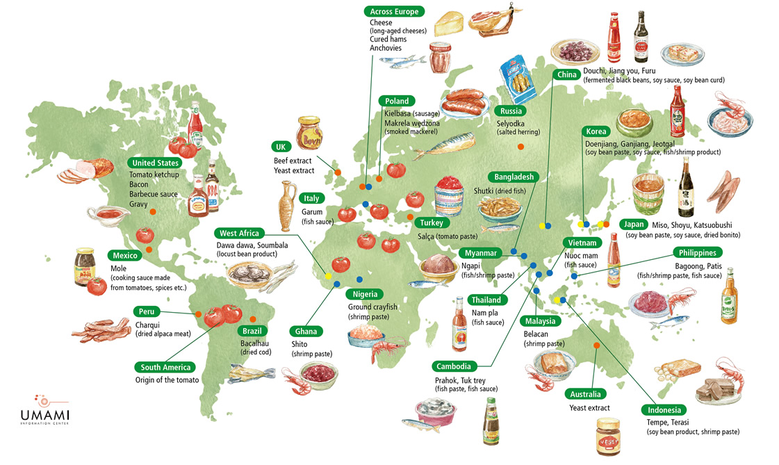 Umami culture around the world umami information center - Different types of cuisines in the world ...